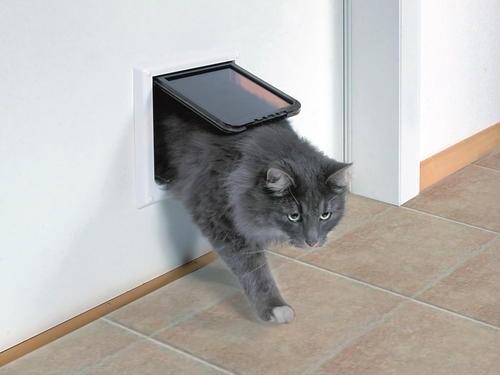 Коты. Двери для котов