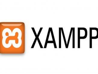 Устанавливаем локальный сервер xampp