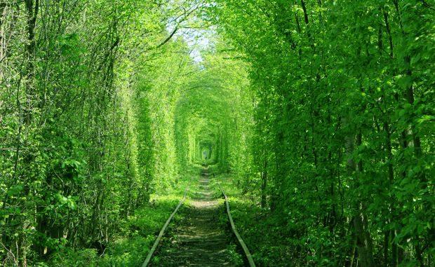 Красивые места Украины. Тоннель любви