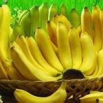 Банан. Полезные и вредные свойства данного фрукта