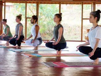 Бесплатные занятия | Йога в Киеве